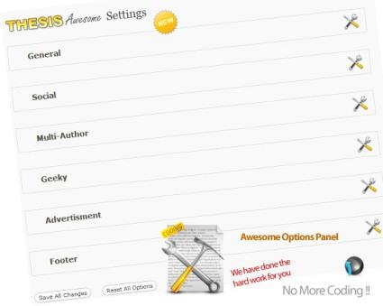 thesis skin option panel